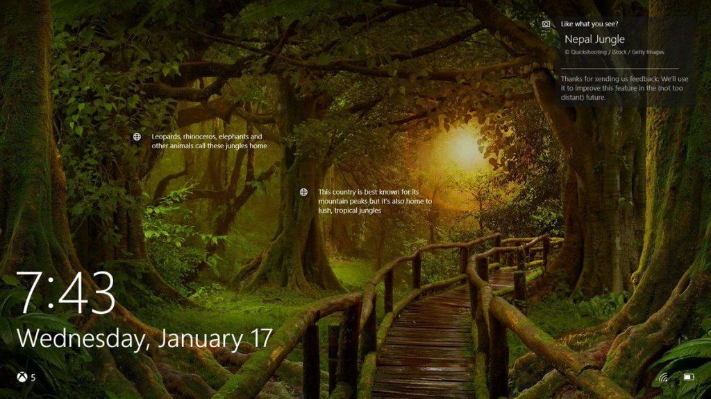Cara Mengaplikasikan Windows Spotlight Background